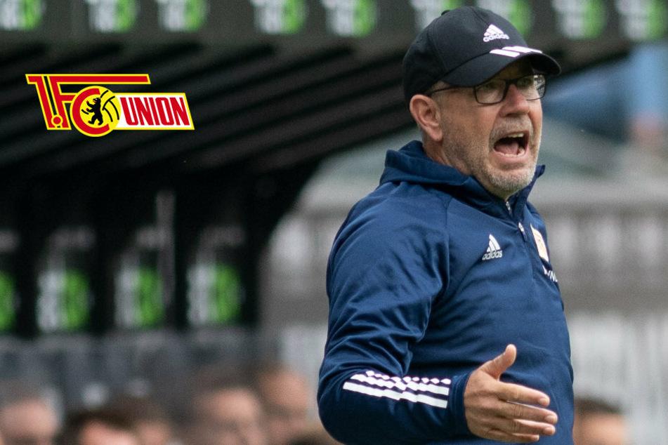 """Angeschossenes Tier"": Union-Coach Urs Fischer zieht Vergleich vor Mainz-Spiel"