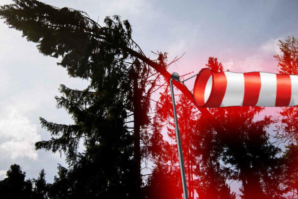 Mittwochmittag besteht Sturmgefahr in Sachsen. Es ist meist wolkig bei 20 Grad.