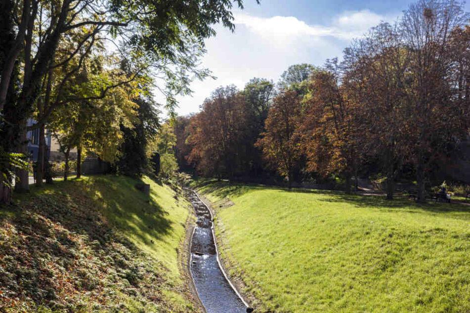 Im Saale-Nebenarm Klia im Merseburger Stadtpark ist am Dienstag eine Frauenleiche gefunden worden.