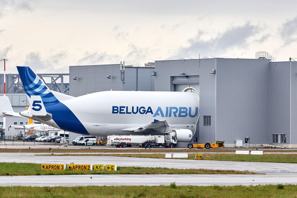 Ein Beluga Frachtflugzeug steht an einer Abfertigungshalle auf dem Gelände von Airbus in Finkenwerder.