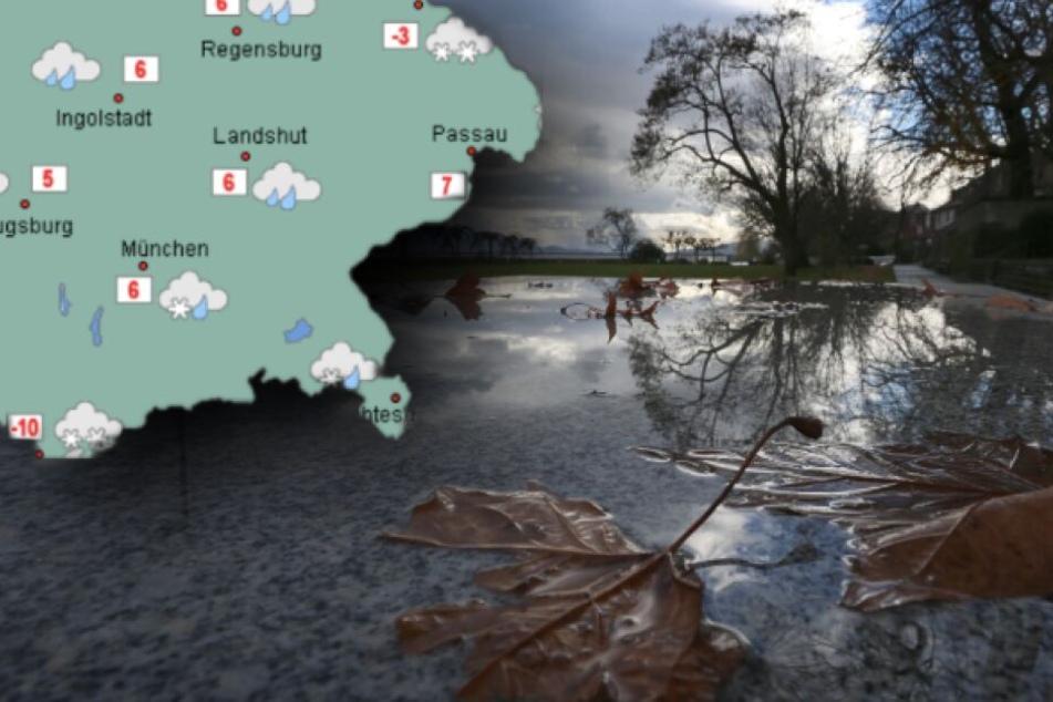 In Bayern wird es in den nächsten Tagen ungemütlich regnerisch.