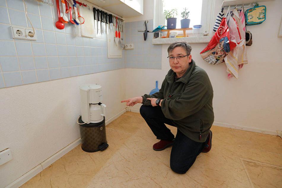 Die Küche war am stärksten betroffen: Hier ist derzeit nur Kaffeekochen möglich. Seit dem gestrigen Montag wird der verschimmelte Fußboden saniert.