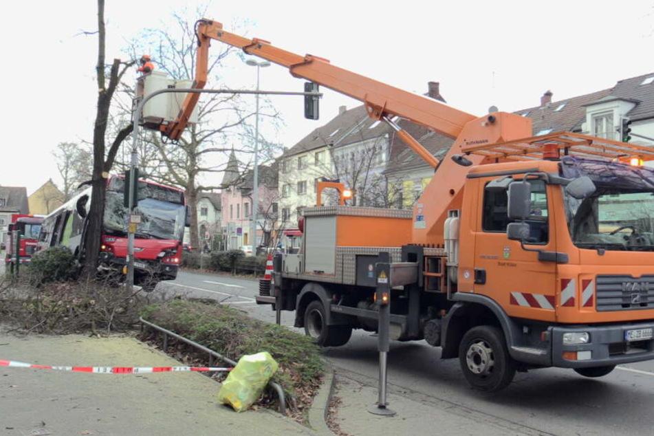Der Baum musste zerkleinert werden, bevor er aus dem Bus entfernt werden konnte.
