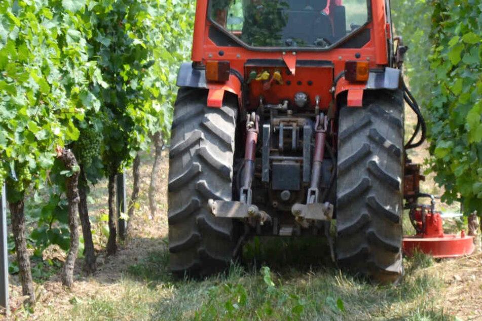 Traktor stürzt von Weinberg in die Tiefe: Fahrer schwer verletzt