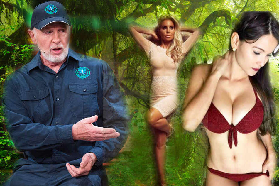 Dr. Bob warnt: Frauen müssen sich im Dschungel gründlich die Brüste waschen!