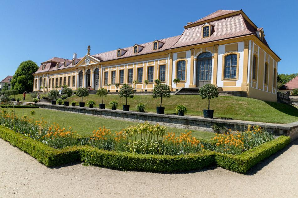 IPO-Gegner monieren: Auch der Barockgarten Großsedlitz wäre betroffen.