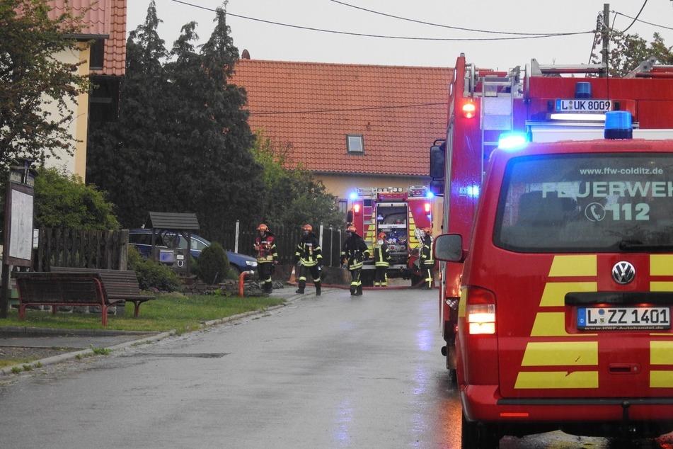 Mehrere Feuerwehren waren wegen des Blitzeinschlags im Einsatz.
