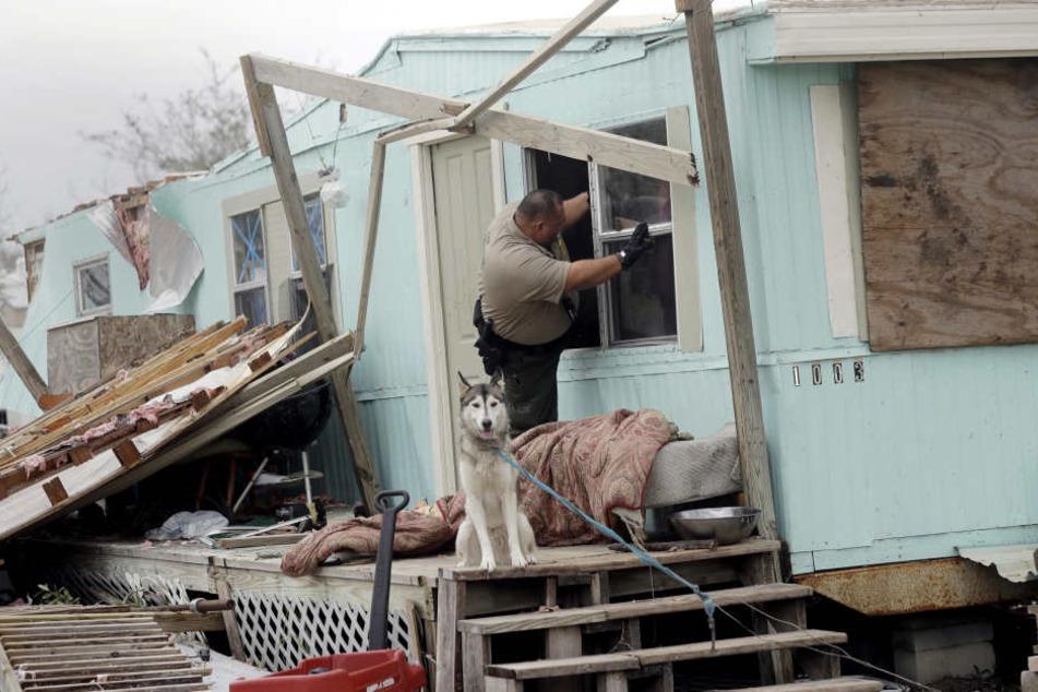 Mehrere Wohnungen wurden zerstört.