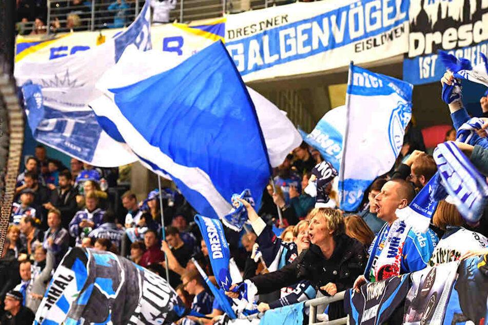Gegen Deggendorf hatten die Eislöwen-Anhänger Grund zum Jubeln. Diesmal geht es per Sonderzug nach Hessen.