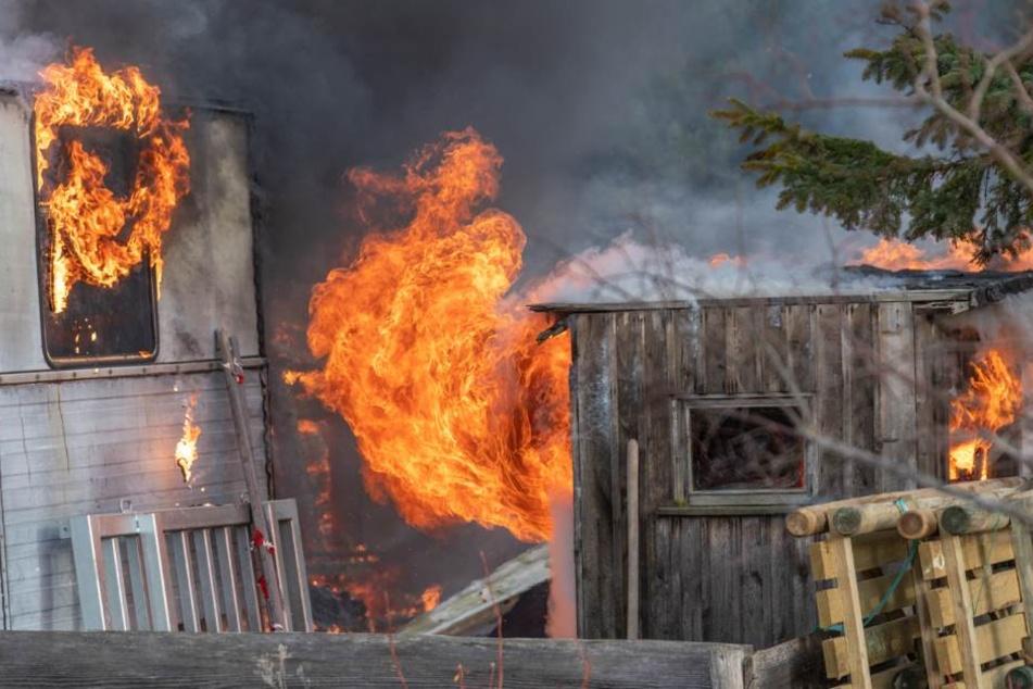 Das Feuer zerstörte einfach alles.
