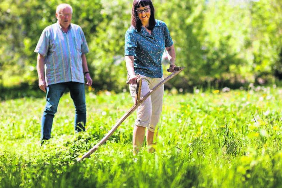 MOPO-Redakeurin Mandy Schneider (46) probiert die Wiesenmahd auf alte  Art.