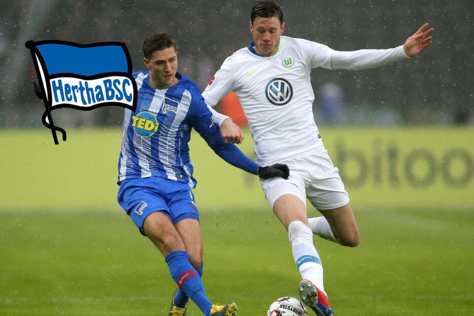 Hertha kassiert Heimniederlage gegen Wolfsburg