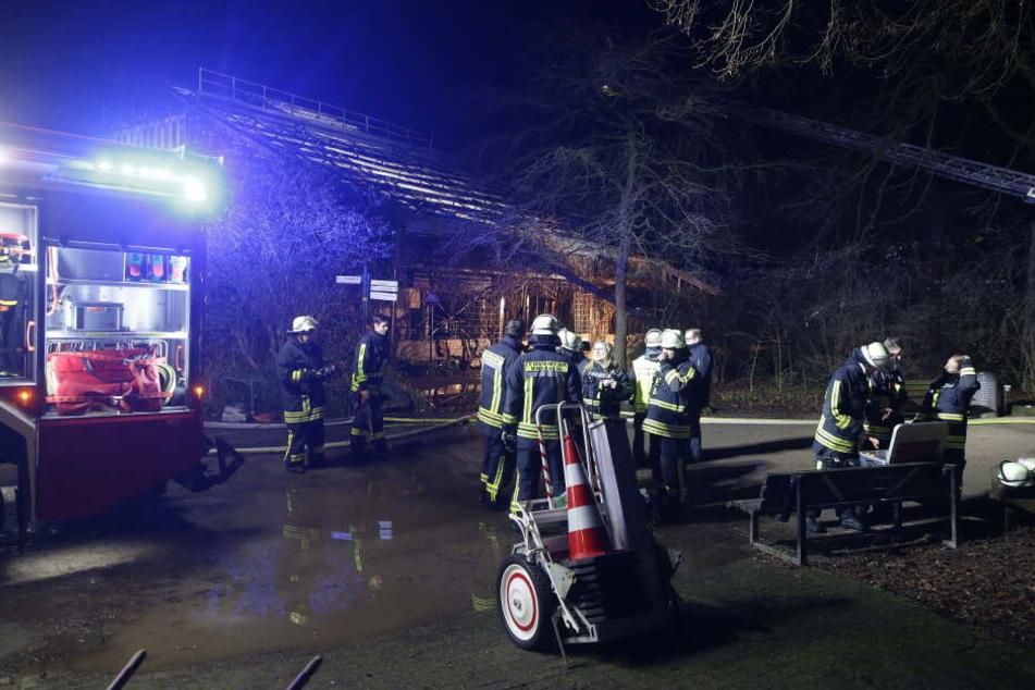 Die Feuerwehr im Einsatz im Zoo Krefeld.