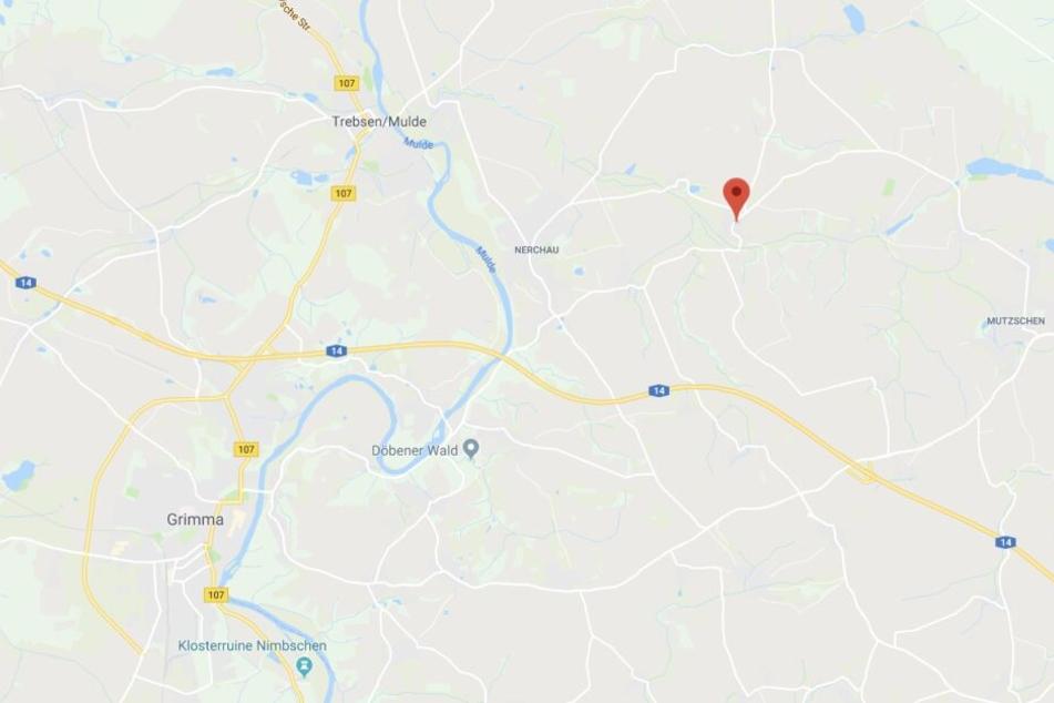 Cannewitz liegt nordöstlich von Grimma.