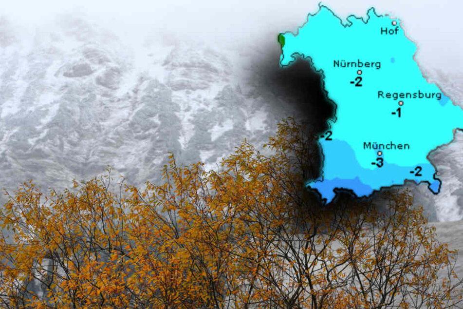 Ein herbstlich gefärbter Baum steht vor schneebedeckten Bergen. In Bayern sinken die Temperaturen unten den Gefrierpunkt. (Bildmontage)