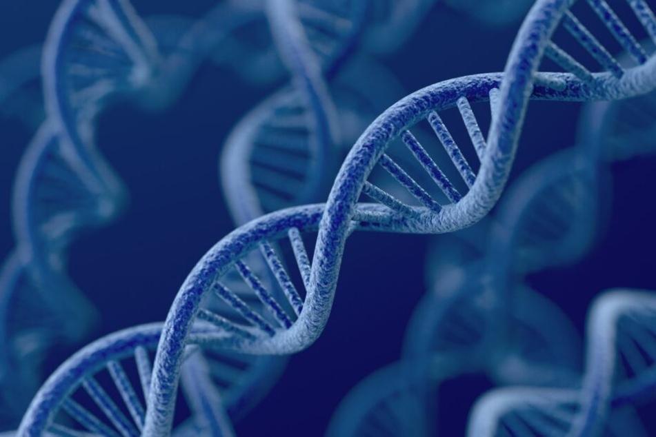 Theoretisch können Ermittler anhand der am Tatort gesammelten DNA die Herkunft einer Person bestimmen. Die deutsche Gesetzgebung verbietet dies aber.