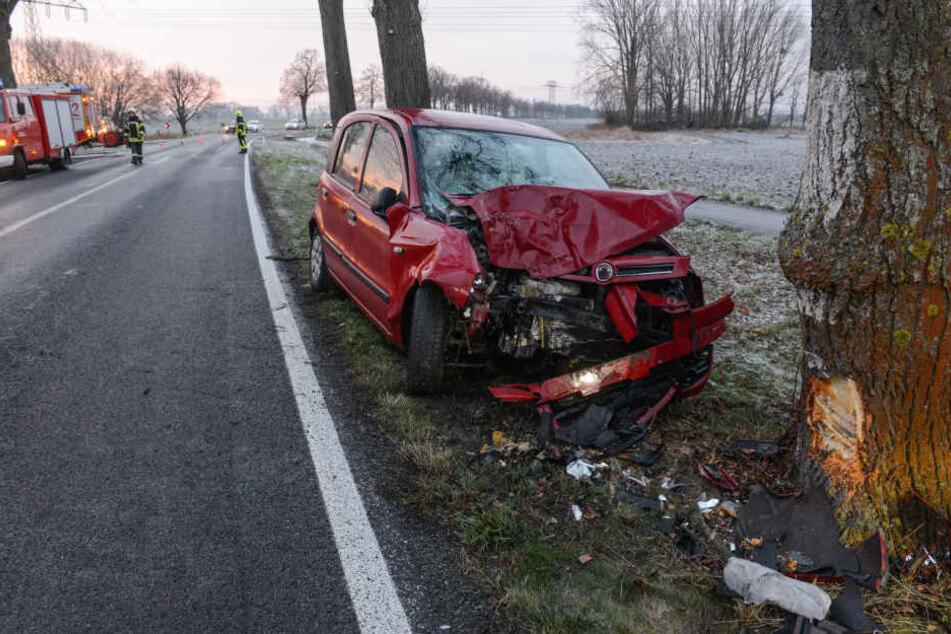 Das Auto der jungen Frau wurde gegen einen Baum geschleudert.