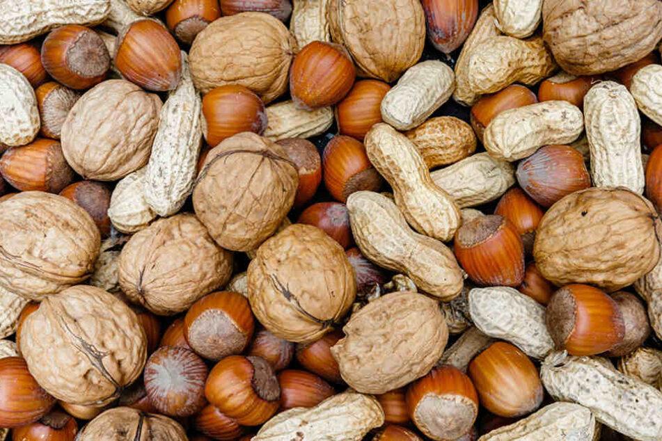 Nüsse können ein Pilzgift enhalten, die bei den Untersuchungen glücklicherweise unter der erlaubten Höchstmenge lagen.