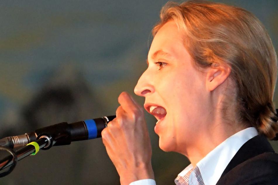 AfD-Weidel will im September 15 Prozent holen