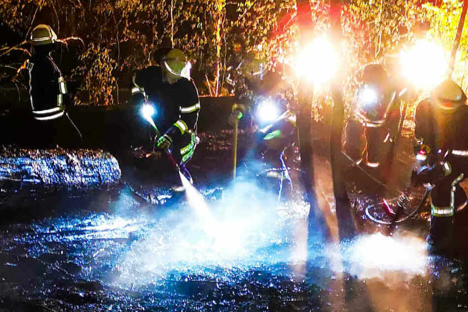 Brandstiftung? Waldbrände in Frankfurt, Schlüchtern und im Odenwald