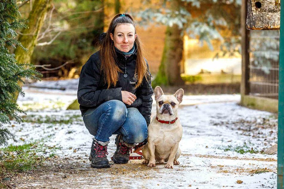 Tierpflegerin Aimeé Zille mit der französischen Bulldogge Timon.