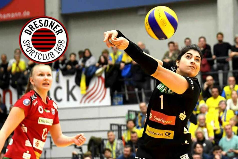 Serie hält: Dresdner SC verliert das Ost-Derby