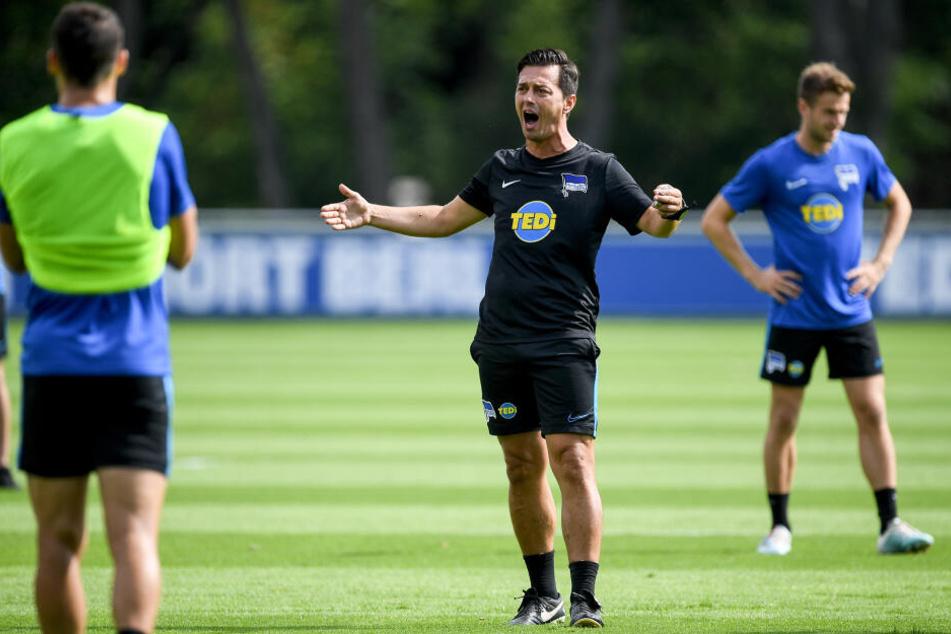 Ante Covic (m.) geht in die erste Saison als Cheftrainer der Hertha.