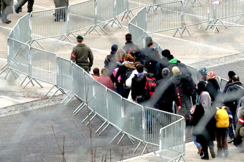 Insgesamt seien 22 Tunesier abgeschoben worden, davon 15 aus Sachsen.