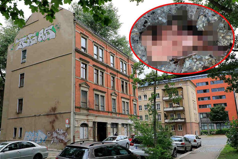 Blutiger Anschlag auf Kraftklub-Kritiker Kohlmann