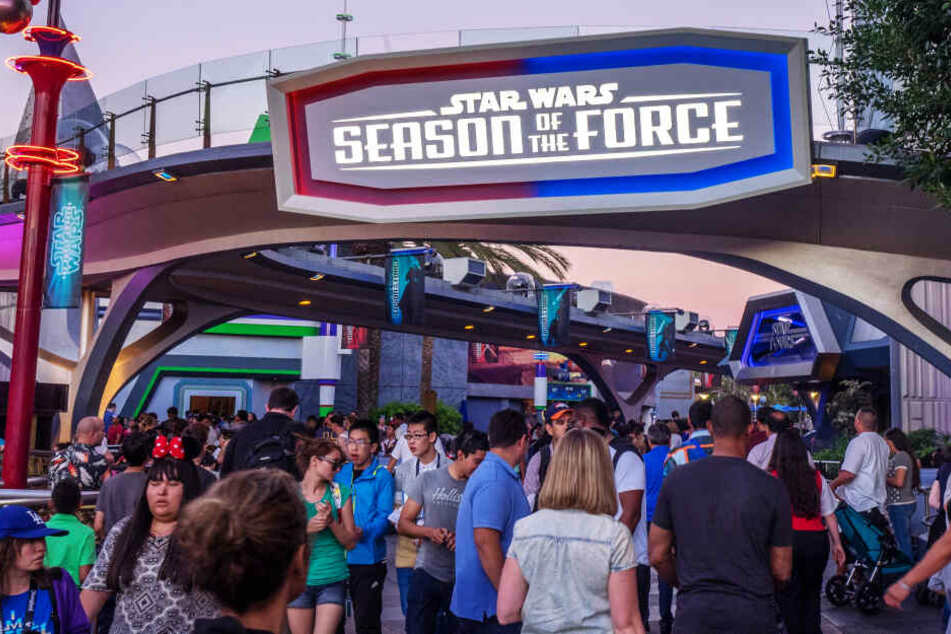 Zum dritten Mal: Disney World nach technischem Defekt teilweise evakuiert!