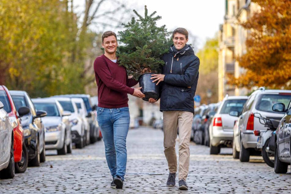 Der Nachhaltigkeit wegen: Zwei Sachsen vermieten Weihnachtsbäume