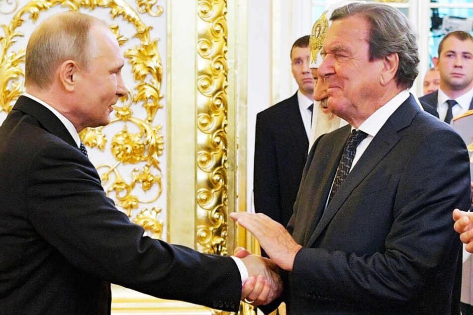 Altbundeskanzler Gerhard Schröder (r.) wird heute Ehrengast seines Freundes Wladimir Putin (l.) sein.