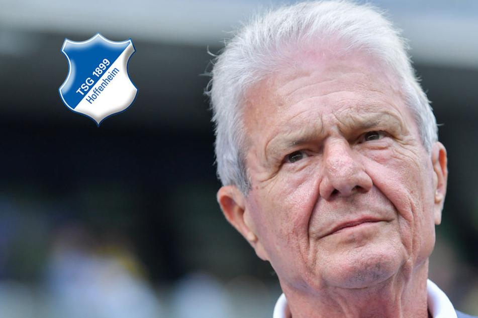 Es wird ernst: Die TSG Hoffenheim steht vor der Verpflichtung des Nagelsmann-Nachfolgers