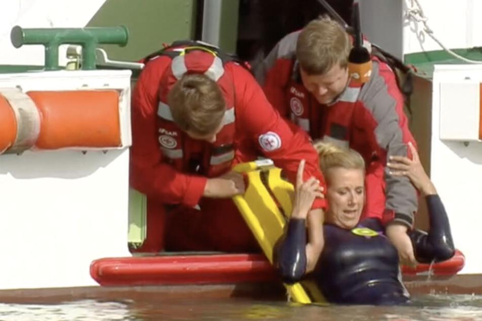 Kiwi wird fachmännisch von den Seenotrettern aus dem Wasser gezogen.