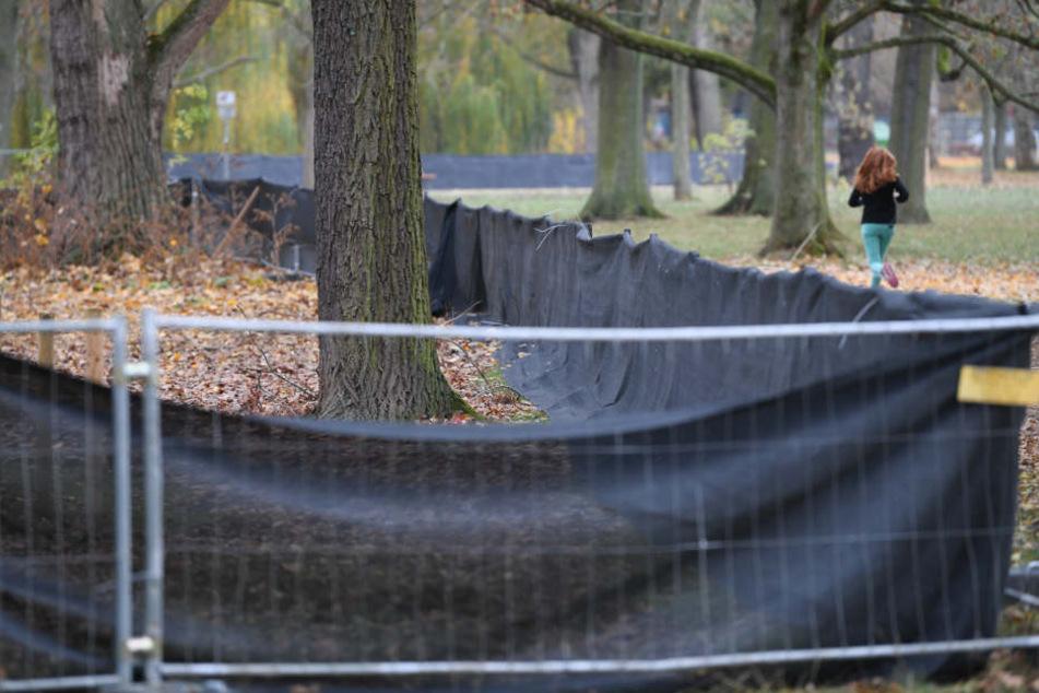 Der Zaun, der die Nilgänse eigentlich fernhalten und vertreiben sollte, ist Stand jetzt lediglich ein optischer Schandfleck.