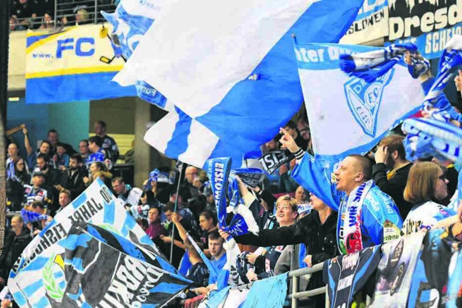 Die Dresdner Fans musste anfangs Schmalkost ertragen, durften aber am Ende den nächste Sieg bejubeln.