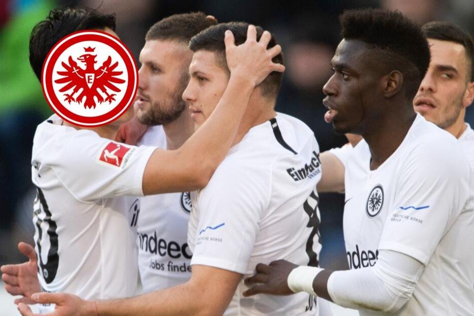 Pferde-Lungen vom Main: Muss die Bundesliga vor dieser Eintracht zittern?