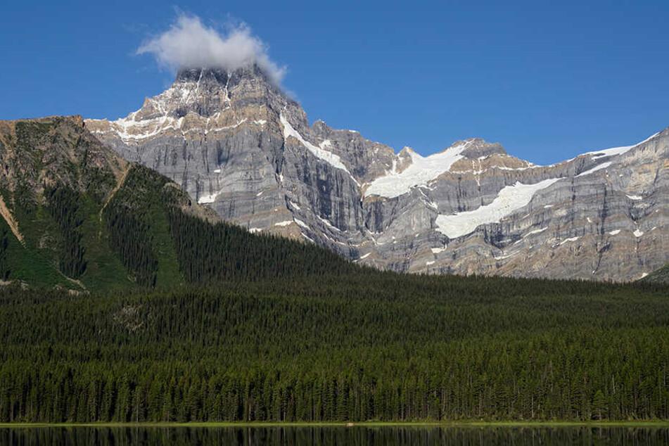 In den kanadischen Rocky Mountains sind die Leichen der drei verunglückten Extremsportler Hansjörg Auer, David Lama und Jess Roskelley gefunden worden.