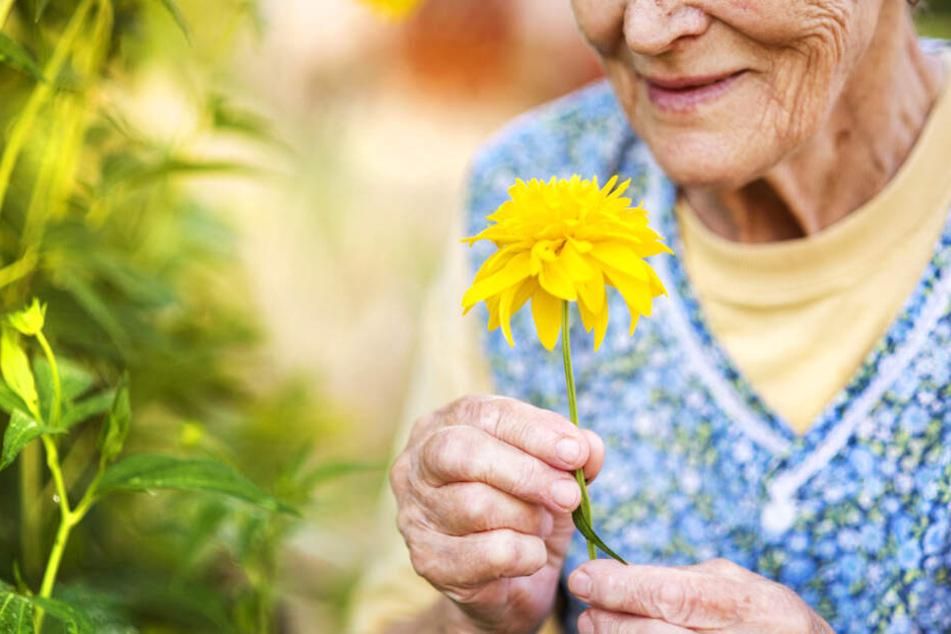 """Nicht jede Oma ist eine """"Unweltsau"""", doch einige sind es sicher (Symbolbild)."""