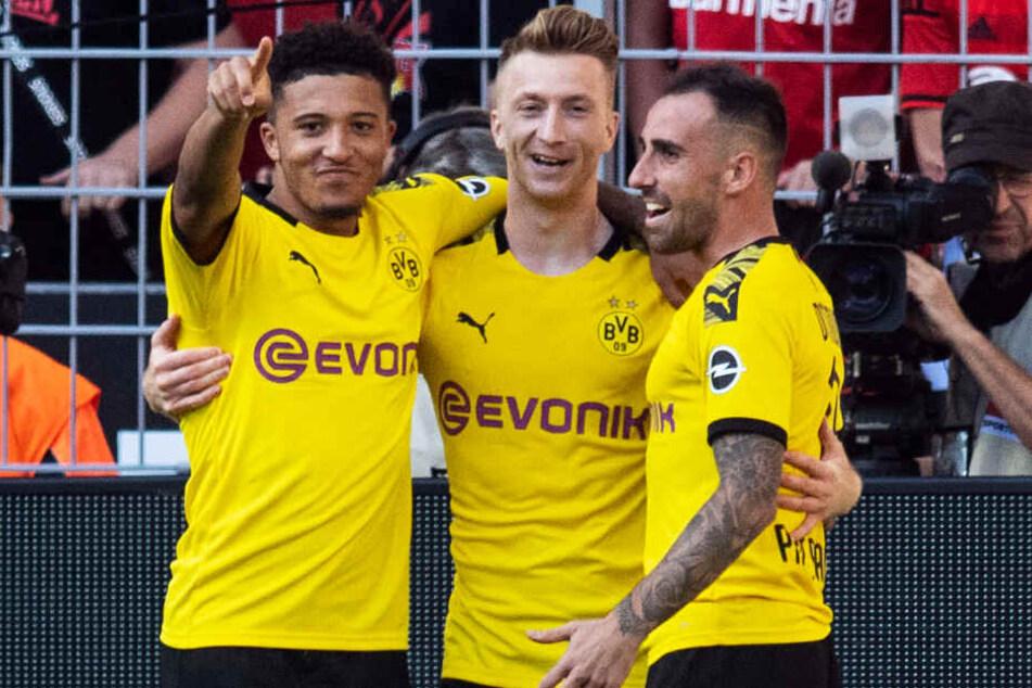 Marco Reus (M.) und Paco Alcacer (r.) sind wieder fit und dürften gegen den BVB in der Startaufstellung stehen. Jadon Sancho tankte beim englischen Nationalteam Selbstvertrauen.