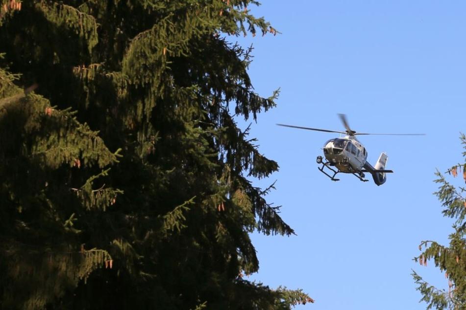 Neben dem Hubschrauber wurde auch ein Spürhund eingesetzt. (Symbolbild)