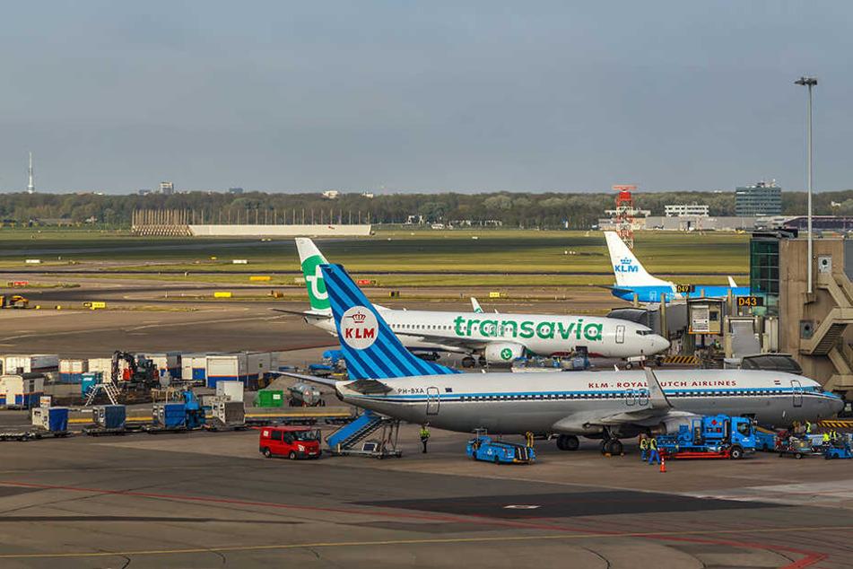 Chaos am Amsterdamer Flughafen! Bis zu 30.000 Reisende sitzen fest