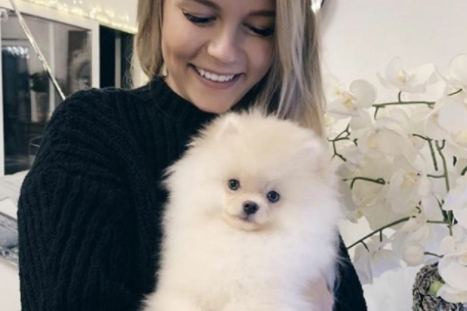 Dieser weiße Hund hat das Herz von YouTube-Star Dagi Bee (24) im Sturm erobert.