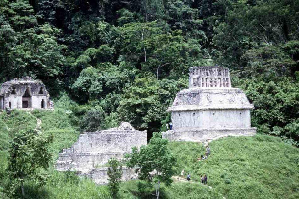 Die Touristengruppe war gerade unterwegs zu der Ruinenstadt Palenque, als die Männer zuschlugen.