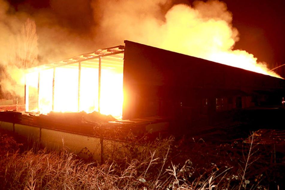 Meterhohe Flammen! Holzhandel in Coswig brennt