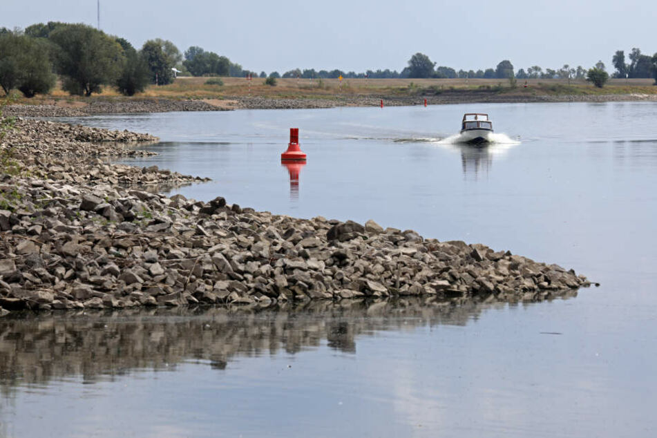 Boote können auf der Elbe bei Dömitz in Mecklenburg-Vorpommern kaum noch fahren.