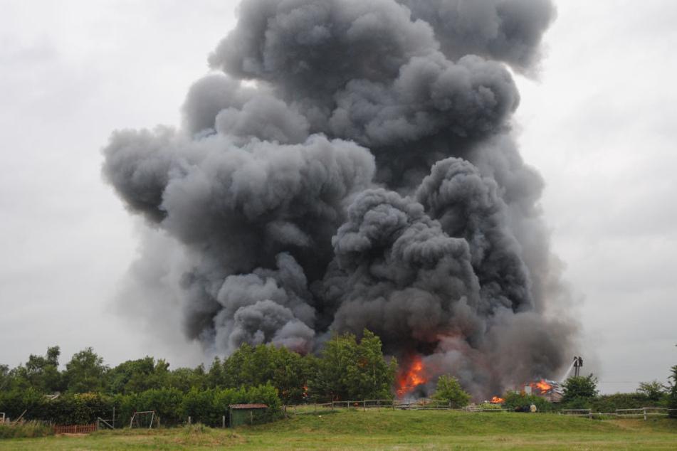 Der brennende Betrieb aus einigen Metern Entfernung.
