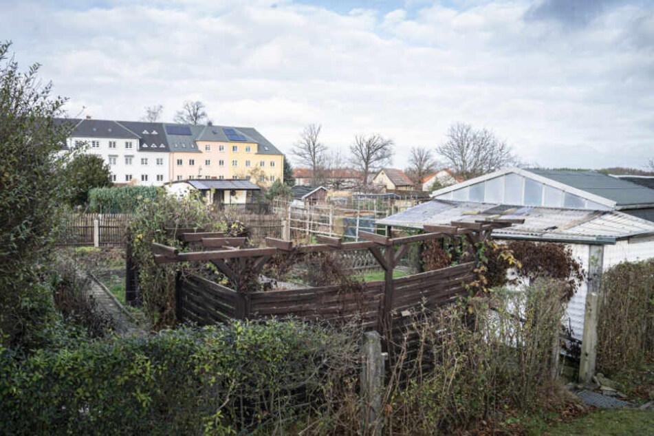 Die Stadt begründet die Bebauung mit dem hohen Leerstand der Gärten. 31 der betroffenen Schollen stehen bereits leer. Die meisten Kleingärtner hatten keine Lust, sich mit der Stadtverwaltung anzulegen.