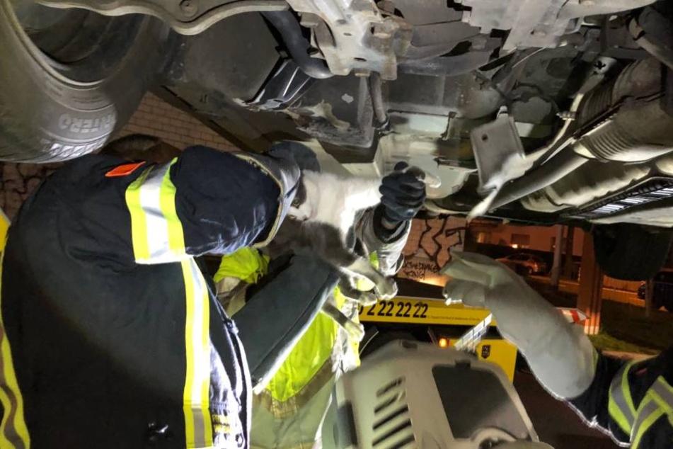 Die Retter der Feuerwehr mussten einige Teile des Unterbaus des Pkw entfernen um die Katze schließlich zu retten.