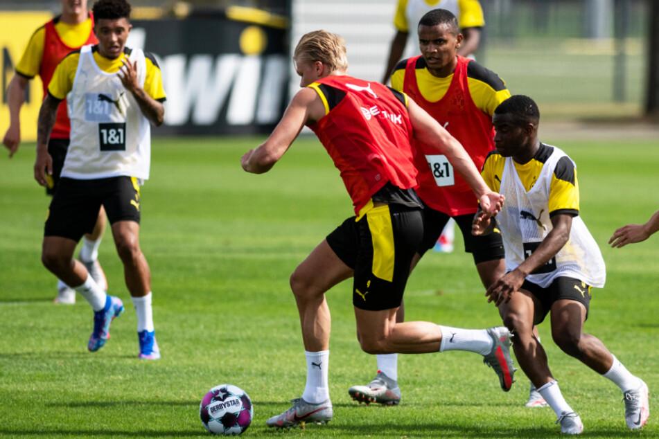 Kein Wunder, dass Youssoufa Moukoko (r.) bereits mit den Profis um Erling Haaland (2.v.l.) trainiert. Für die U19 des BVB erzielte er gegen Essen einen Viererpack. (Archivbild)